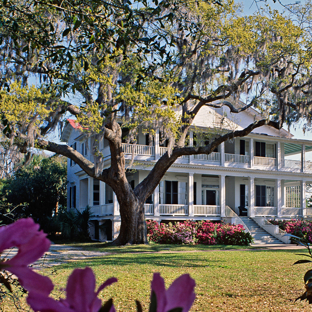 Best Day Trips from Charleston