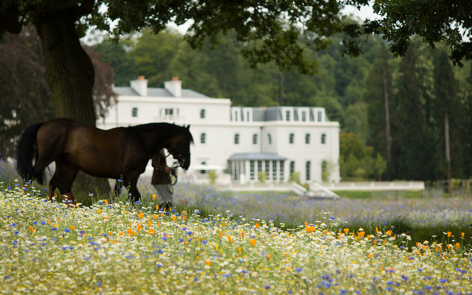 English Country-House Hotels