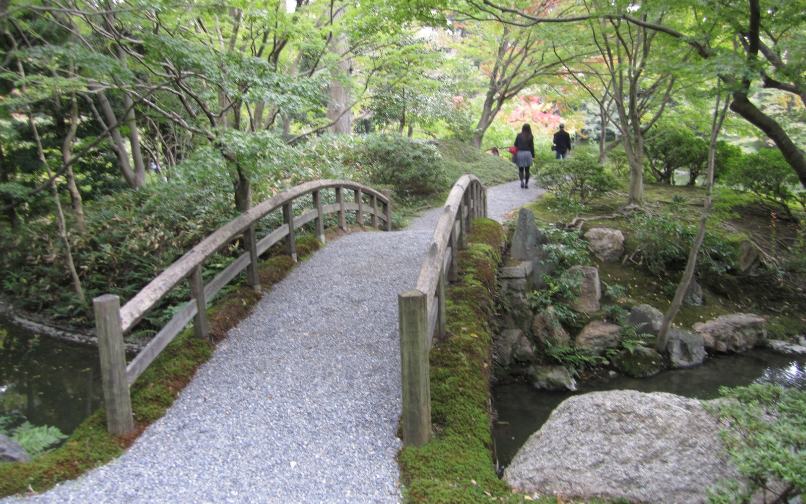 The Beauty of Japanese Gardens in Kyoto