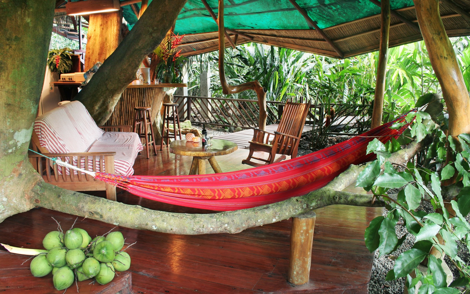 Tree house lodge lim n costa rica world s coolest tree for Tree house costa rica