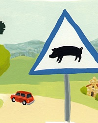 Driving Portugal | The Year of the Pig