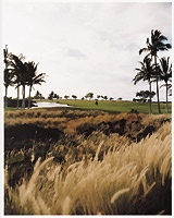 Golf Courses in Kohala