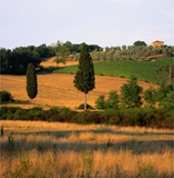 The Best Country Hotels of Tuscany