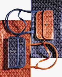 The Goyard Saint Louis Bag