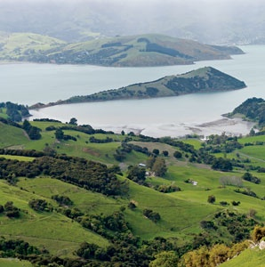 An Intimate Tour of New Zealand