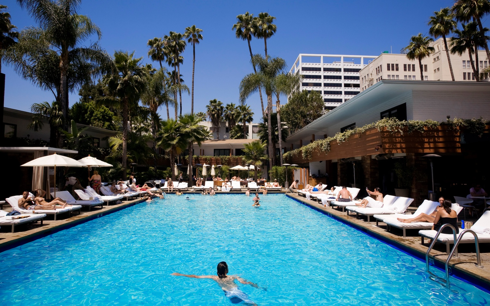 Best hotel pools in los angeles travel leisure - Indoor swimming pool in los angeles ...