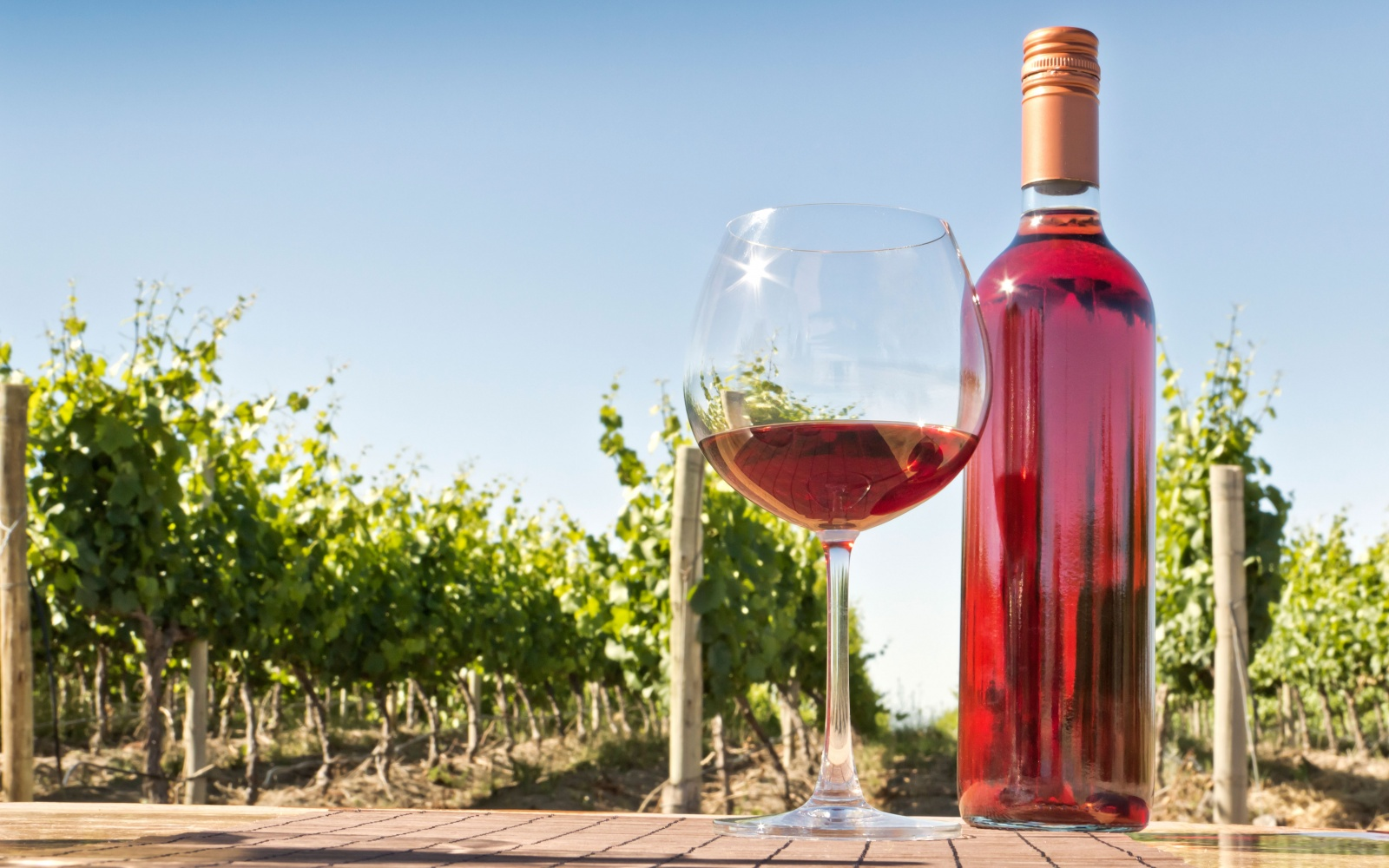 all you need to know about picking a summer ros u00e9 wine