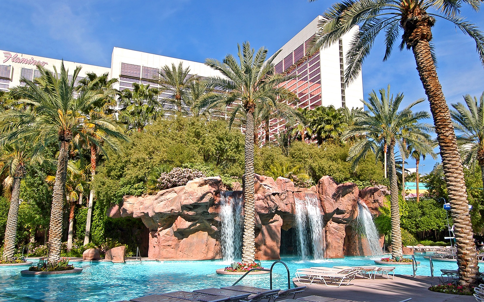 GO Pool, The Flamingo Vegas