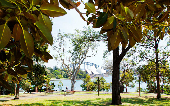 Royal Botanic Garden and The Domain in Sydney