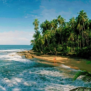 5 Reasons to Visit Costa Rica's Caribbean Side