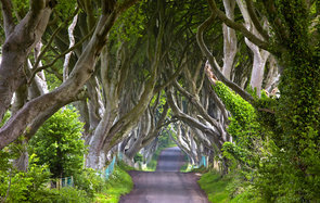 TV Show Locations Game of Thrones HBO Kingsroad