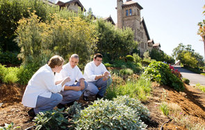 culinary students at the Culinary Institute of America, St. Helena, CA