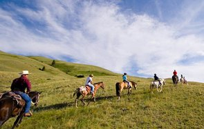 adventure horseback riding in Absaroka Mountains in Yellowstone, WY