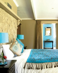 High and Low Hotels: South African Wine Country