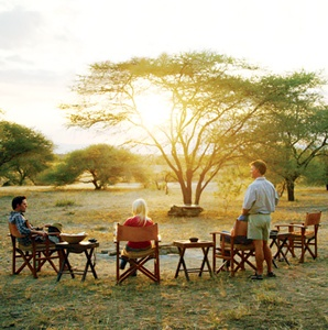 African Safaris: Two Ways to Go