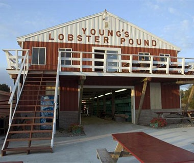 Young's Lobster Pound, Belfast - The 10 Best Lobster Shacks In Maine | Travel + Leisure