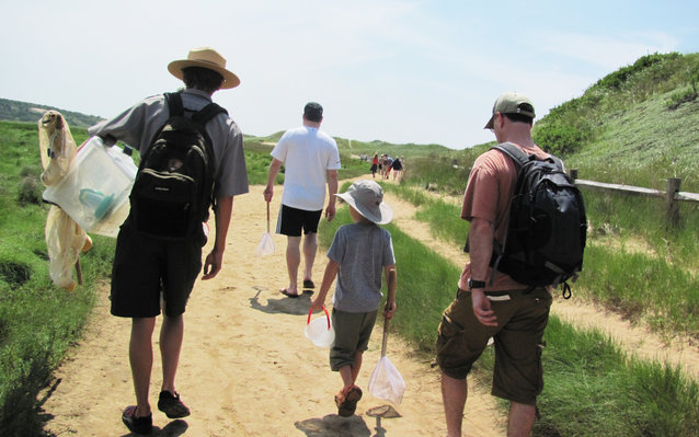Cape Cod National Sea Shore Guided Tours