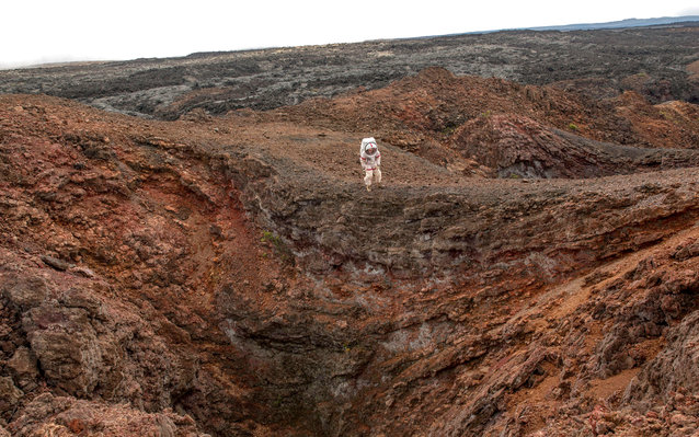 See the Martian Lava Fields of Hawaii