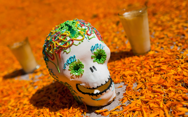 Decorated skull for Mexico's Day of the Dead