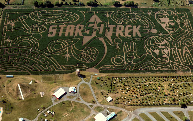 An aerial view of the Star Trek corn maze.