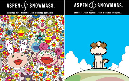 2015 Aspen Lift Tickets