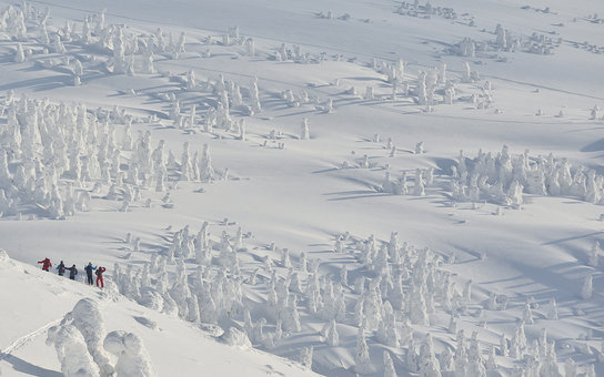 These walkers brave freezing conditions and trek across a snowy mountain - and look like they are joined by thousands of snowmen. 