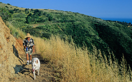 A9T7WE Hiker and dog at Solstice Canyon in Malibu, California