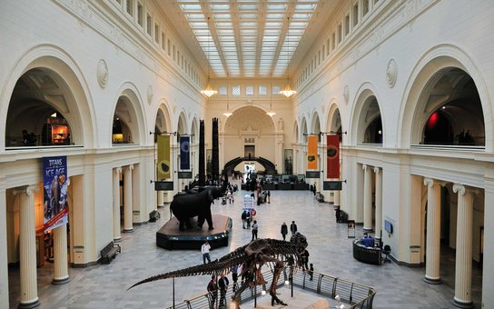 Main Hall at Field Museum
