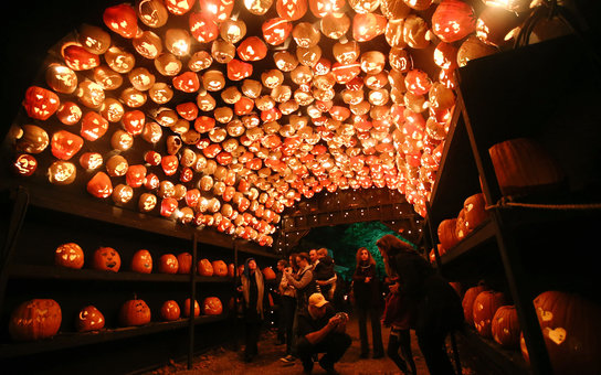 The Great Jack O'Lantern Blaze Pumpkin Farm