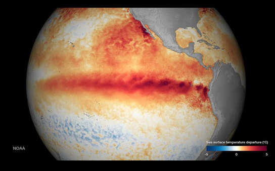 New Weather Threat the Blob / El Nino
