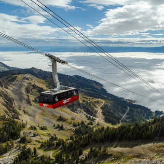 Things for Do for Families in Jackson Hole
