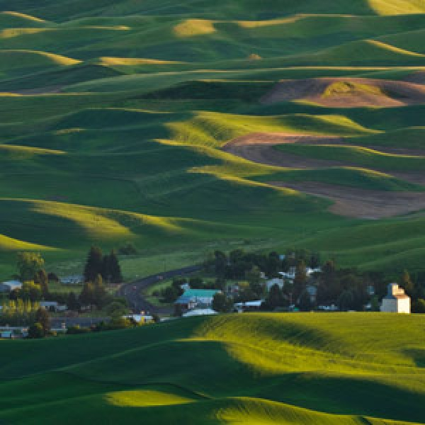 Palouse Scenic Byway Cruising