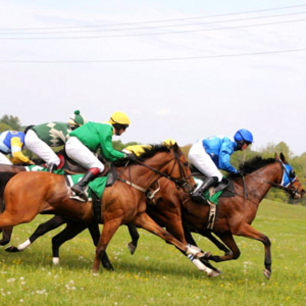 Horse Racing in Middleburg